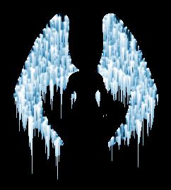 Icewings_02_Dax