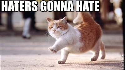 haters_gonna_hate_cat-14275_large.jpg